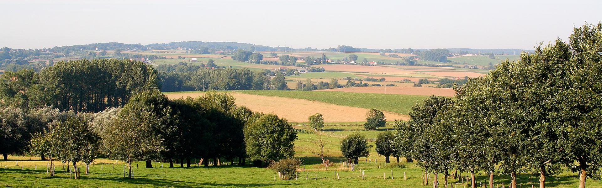 Logeren in de Vlaamse Ardennen met groepen