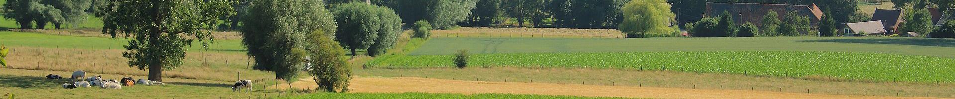 Logeren in de Vlaamse Ardennen