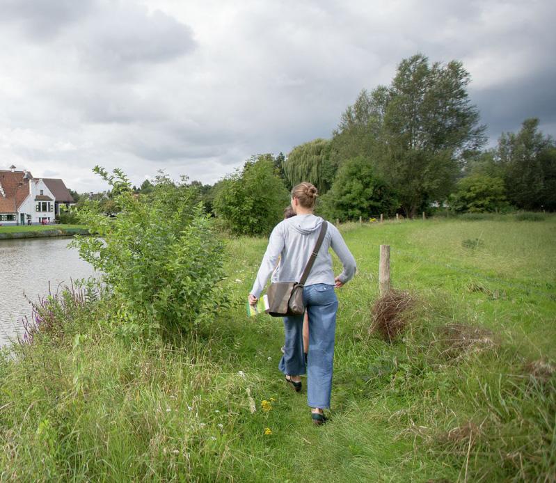 Wandelen en logeren in de Vlaamse Ardennen